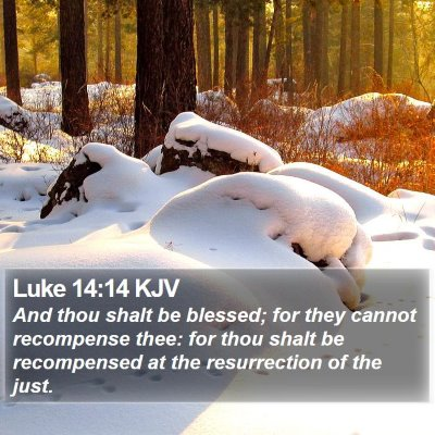 Luke 14:14 KJV Bible Verse Image