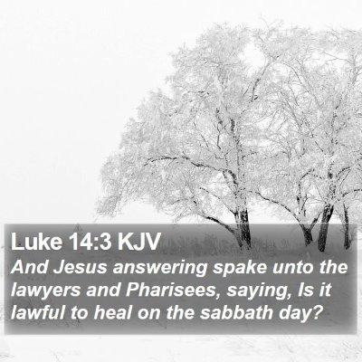 Luke 14:3 KJV Bible Verse Image