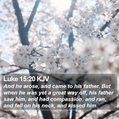 Luke 15:20 KJV Bible Verse Image