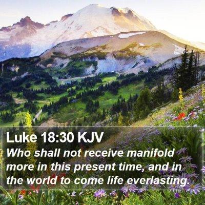 Luke 18:30 KJV Bible Verse Image
