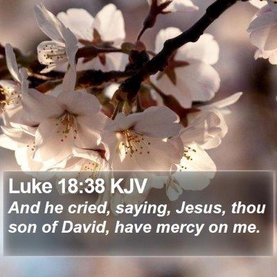 Luke 18:38 KJV Bible Verse Image