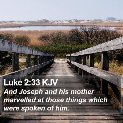 Luke 2:33 KJV Bible Verse Image