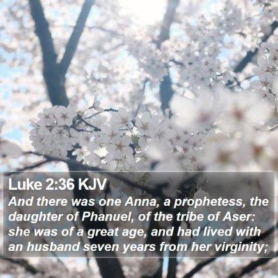 Luke 2:36 KJV Bible Verse Image