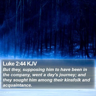Luke 2:44 KJV Bible Verse Image
