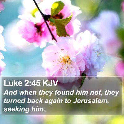 Luke 2:45 KJV Bible Verse Image