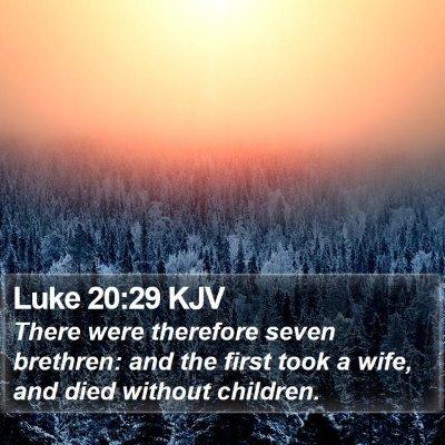 Luke 20:29 KJV Bible Verse Image