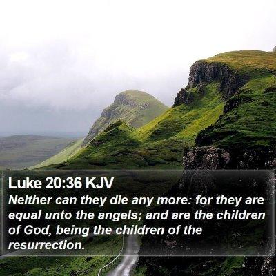 Luke 20:36 KJV Bible Verse Image