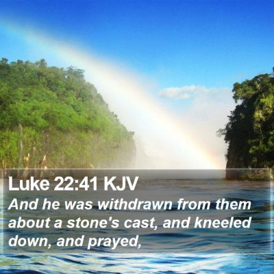 Luke 22:41 KJV Bible Verse Image