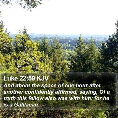 Luke 22:59 KJV Bible Verse Image