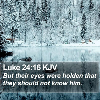 Luke 24:16 KJV Bible Verse Image
