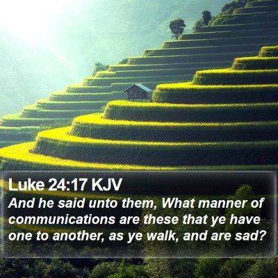 Luke 24:17 KJV Bible Verse Image