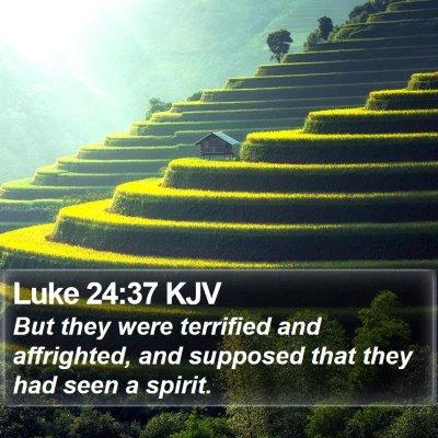 Luke 24:37 KJV Bible Verse Image