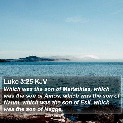 Luke 3:25 KJV Bible Verse Image