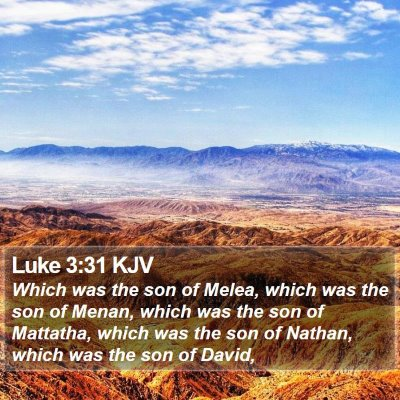 Luke 3:31 KJV Bible Verse Image
