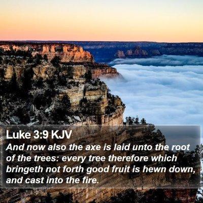Luke 3:9 KJV Bible Verse Image