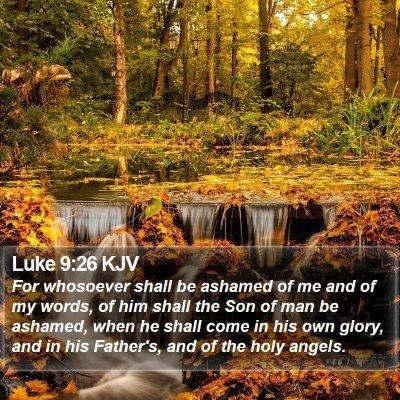 Luke 9:26 KJV Bible Verse Image