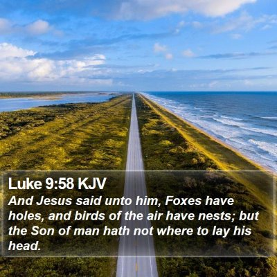 Luke 9:58 KJV Bible Verse Image