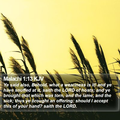 Malachi 1:13 KJV Bible Verse Image