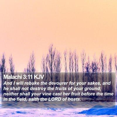 Malachi 3:11 KJV Bible Verse Image