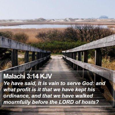 Malachi 3:14 KJV Bible Verse Image