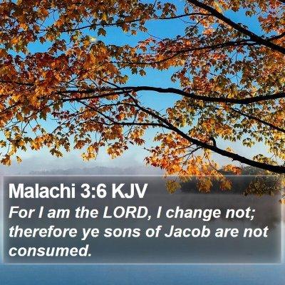 Malachi 3:6 KJV Bible Verse Image
