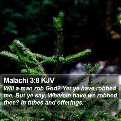 Malachi 3:8 KJV Bible Verse Image