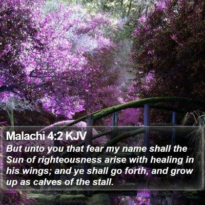 Malachi 4:2 KJV Bible Verse Image