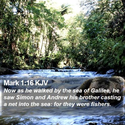 Mark 1:16 KJV Bible Verse Image