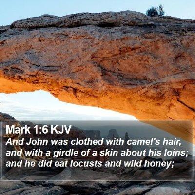 Mark 1:6 KJV Bible Verse Image