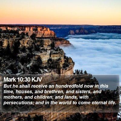 Mark 10:30 KJV Bible Verse Image