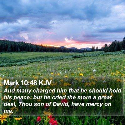 Mark 10:48 KJV Bible Verse Image