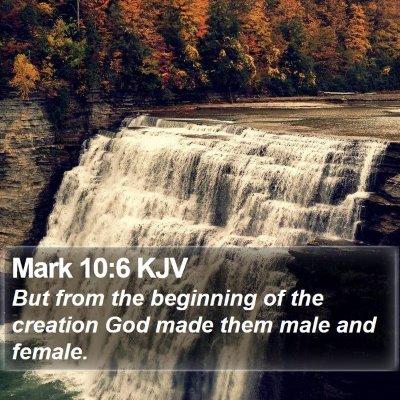 Mark 10:6 KJV Bible Verse Image