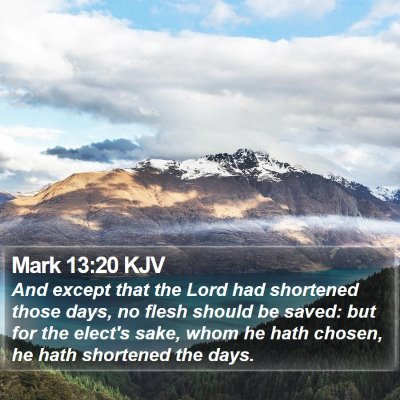 Mark 13:20 KJV Bible Verse Image