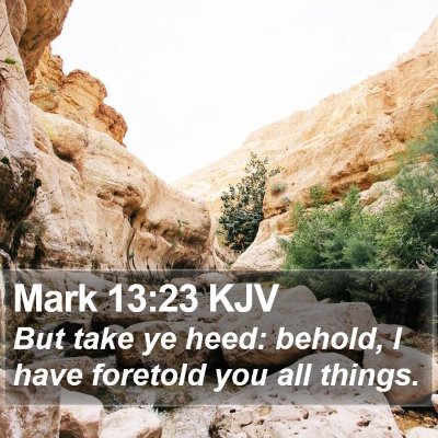 Mark 13:23 KJV Bible Verse Image