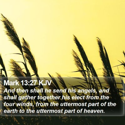 Mark 13:27 KJV Bible Verse Image