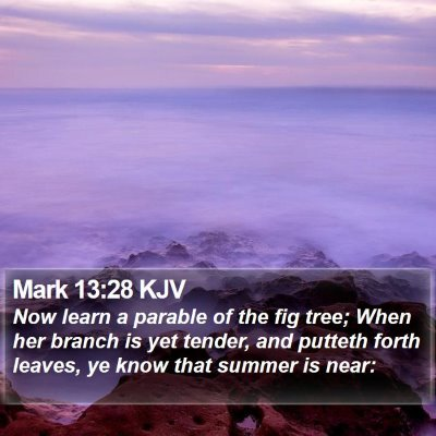 Mark 13:28 KJV Bible Verse Image