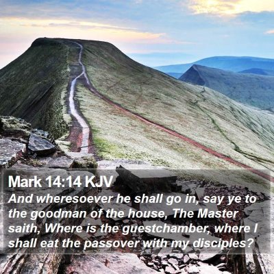 Mark 14:14 KJV Bible Verse Image