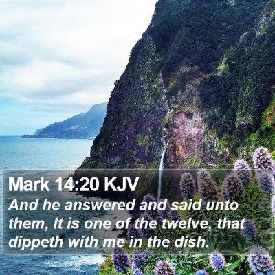 Mark 14:20 KJV Bible Verse Image