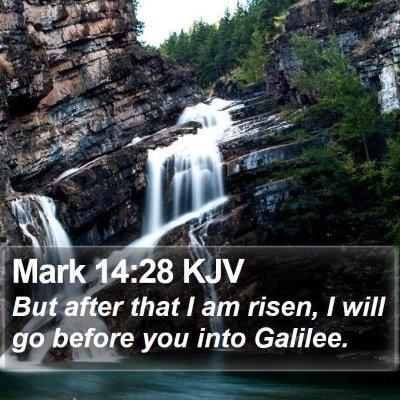 Mark 14:28 KJV Bible Verse Image