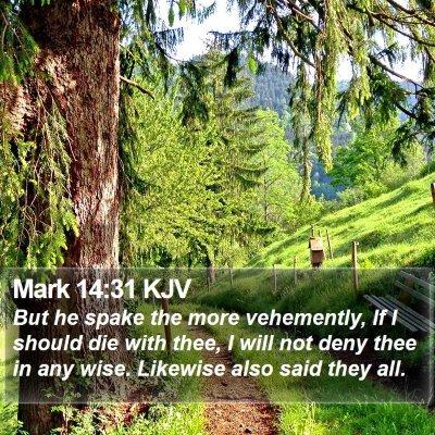 Mark 14:31 KJV Bible Verse Image