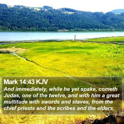 Mark 14:43 KJV Bible Verse Image