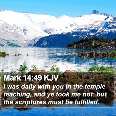 Mark 14:49 KJV Bible Verse Image