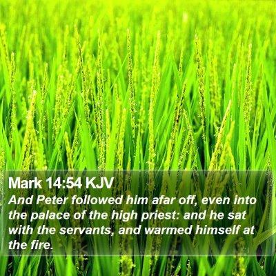 Mark 14:54 KJV Bible Verse Image