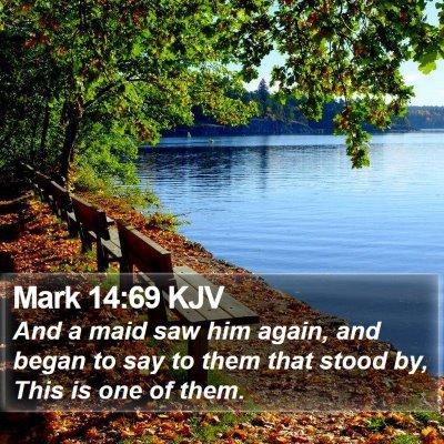 Mark 14:69 KJV Bible Verse Image