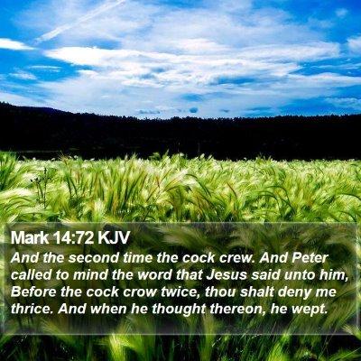 Mark 14:72 KJV Bible Verse Image