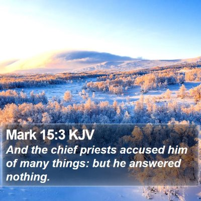 Mark 15:3 KJV Bible Verse Image