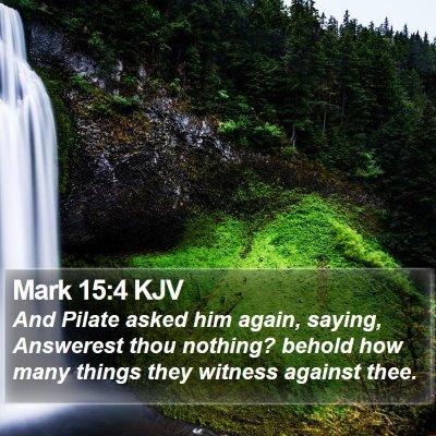 Mark 15:4 KJV Bible Verse Image