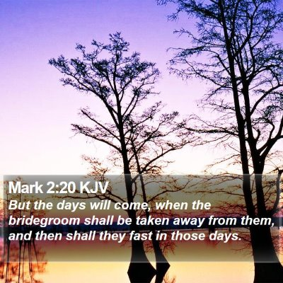 Mark 2:20 KJV Bible Verse Image