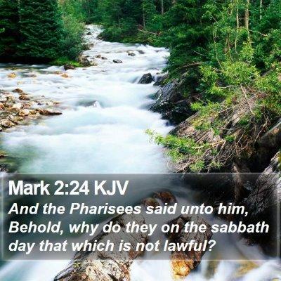 Mark 2:24 KJV Bible Verse Image