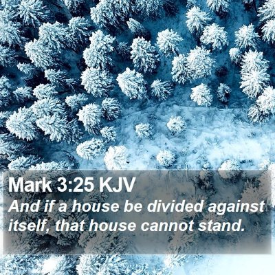 Mark 3:25 KJV Bible Verse Image